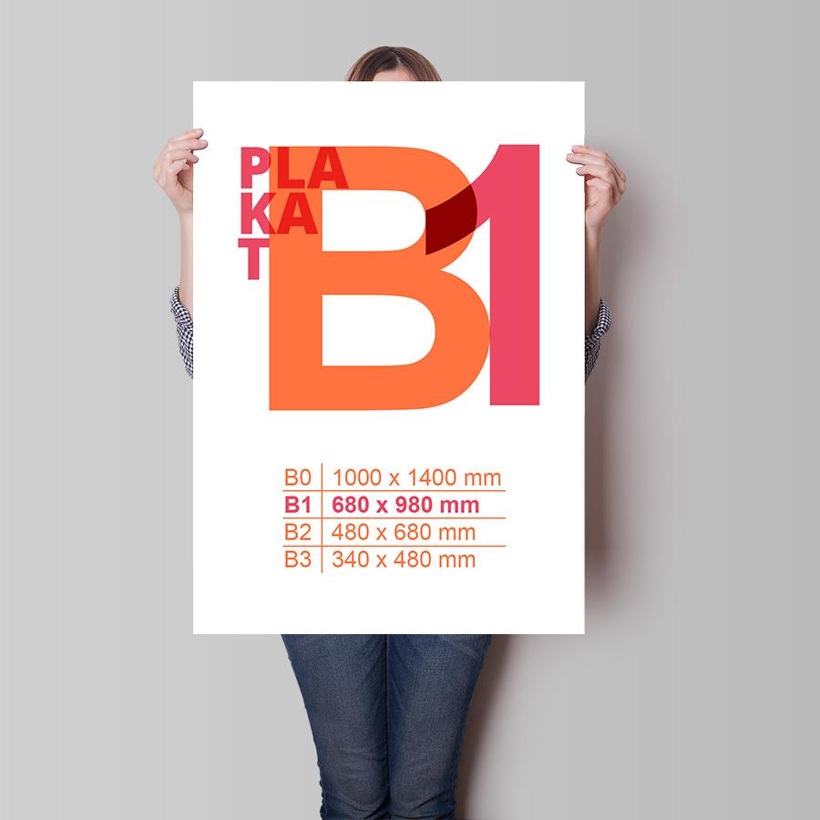 B1_pion