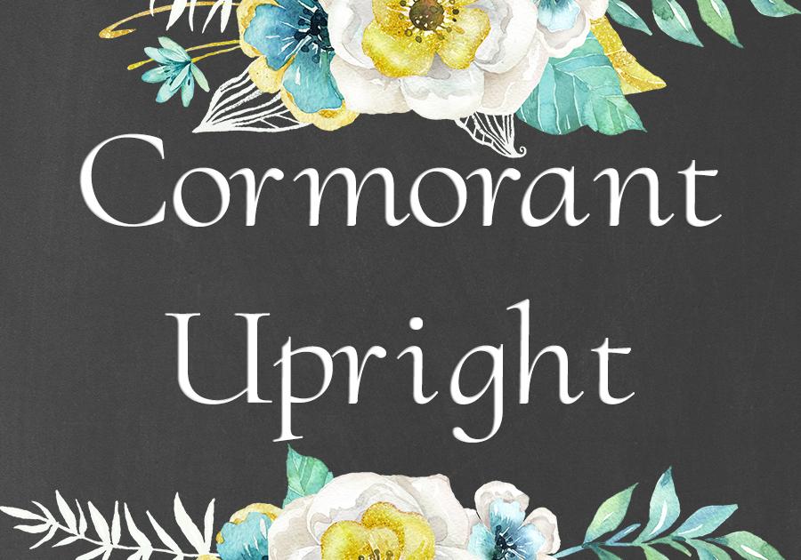 Cormorant Upright