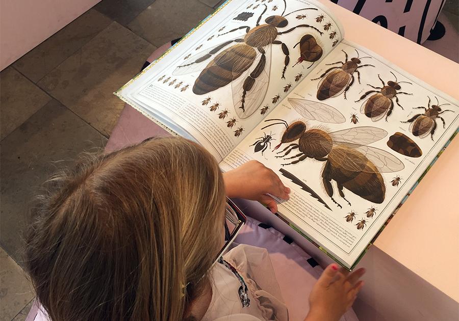 Polska Ilustracja Dla Dzieci Wystawa W Galerii Bwa Blogomat